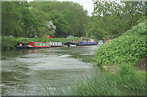 ST6469 : River Avon, Durleypark by Pierre Terre