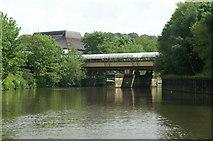 ST7464 : River Avon below Sainsbury's Bridge by Pierre Terre