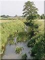 ST6896 : Little Avon River from Matford Bridge by Sharon Loxton