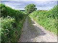 NZ1715 : Boat  Lane by Hugh Mortimer
