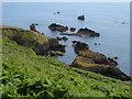 SX8848 : Combe Rocks & Western Combe Cove by Derek Harper