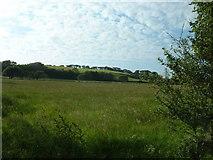 SH3435 : Farmland near Efailnewydd by David Medcalf