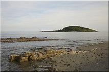 SX2551 : St George's Island (Looe Island) by Ewan Stevenson