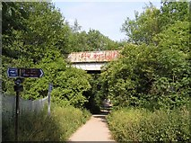 SK4482 : Old railway bridge, Rother Valley Park by David Morris