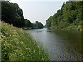 NY4950 : River Eden by Andrew Smith