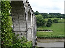 SX4368 : Calstock viaduct and the road to Ferry Farm by Penny Mayes
