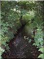SW6234 : Stream near Clowance wood by Sheila Russell