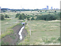 TQ5377 : drainage ditch, Crayford Marsh by Stephen Craven