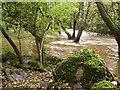 SM9736 : Afon/River Gwaun in spate by ceridwen