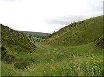 H4994 : Butterlope Glen by Kenneth  Allen