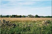 SP3113 : Field, Field Assarts by SA Mathieson