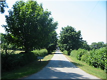 SE7484 : Driveway to Sinnington Lodge by Phil Catterall