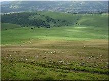 SO2718 : Paths in the bracken by Hugh Venables