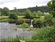 S6337 : Old bridge piers in the River Nore, Inistioge, Co. Kilkenny by Humphrey Bolton