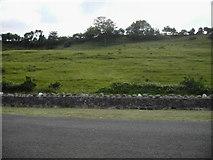 D3510 : Hillside by Nygel Gardner