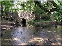 ST6601 : Kettle Bridge, Cerne Abbas by Jim Champion