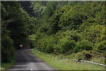 C7535 : Burrenmore Road, Downhill by Albert Bridge
