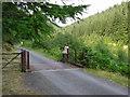 SH7810 : Dyfi Forest by Roger W Haworth