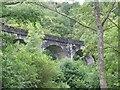 NN3210 : Viaduct above Loch Lomond by John Allan