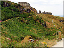 SX0588 : Tintagel Castle by Pam Brophy