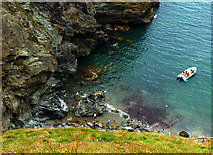 SX0589 : Tintagel Haven by Pam Brophy