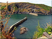 SW9980 : Harbour Entrance to Port Isaac by Pam Brophy