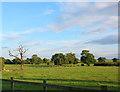 SJ5840 : View towards Ightfield from Ashwood Farm by Espresso Addict