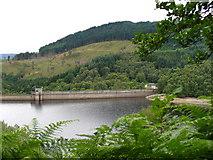 NN5207 : Glen Finglas Reservoir by Colin Smith