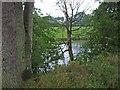 NY6628 : Fishing lake, High Slakes, near Milburn by Oliver Dixon