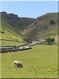 SK1382 : Winnatts Pass near Castleton, Derbyshire by Chris Bird