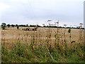 TM3687 : Fields  near Manor Farm by Linda Bailey