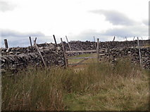 SE0076 : Gate on ridge wall between Little Whernside and Great Whernside by Bill Griffiths