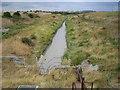 TQ6775 : East Tilbury Marshes by Nigel Cox