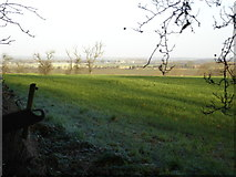 SK7431 : View from Harby churchyard across the Vale by Ruth Raven