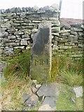SE1253 : Boundary stone by Ray Woodcraft