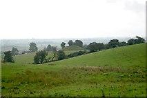 N6077 : Castle Motte, Patrickstown by Bob Embleton