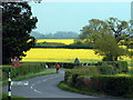 TQ1329 : Rape near Fulfords by Chris Shaw