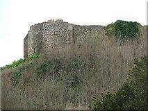 TM1473 : Eye - Castle by David Barnes