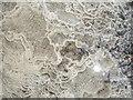 SK9200 : The floor inside Morcott tunnel by Olga Pavlovsky