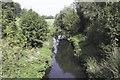 SJ3924 : The River Perry by John Harding