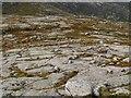 NN1744 : Rock garden, Meall Tarsuinn by Chris Eilbeck
