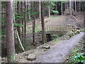 NZ0830 : Bridge : Windy Bank Woods by Hugh Mortimer