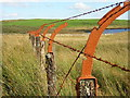 NS5351 : Rusty Old Fence by Iain Thompson