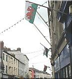SH4862 : Dragons Galore in Bangor Street by Eric Jones