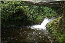J3996 : Glenoe waterfall (3) by Albert Bridge