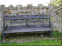 NY9874 : Millennium Seat Bingfield by P Glenwright