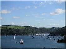 SX1251 : Penleath Point and Fowey Harbour by Rib