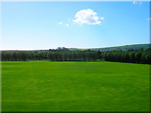 TQ4109 : Convent Field by Simon Carey