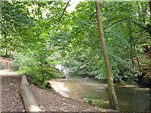 SJ8383 : Wilmslow (Styal) - Bollin Valley by Mike Harris