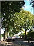 SX9065 : Parkhurst Road, Torquay by Derek Harper